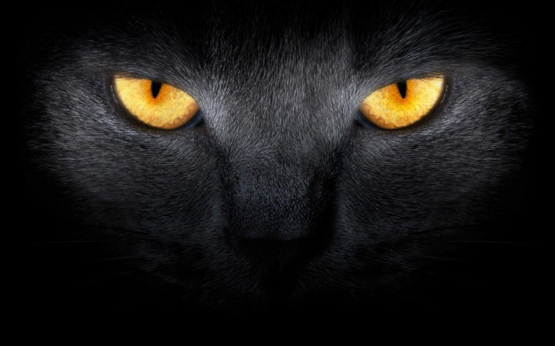 Oko woko zwłasnym strachem